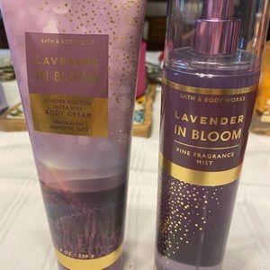 Lavender in bloom set